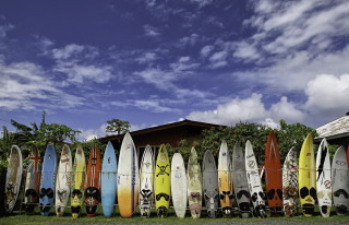 maui surf boards